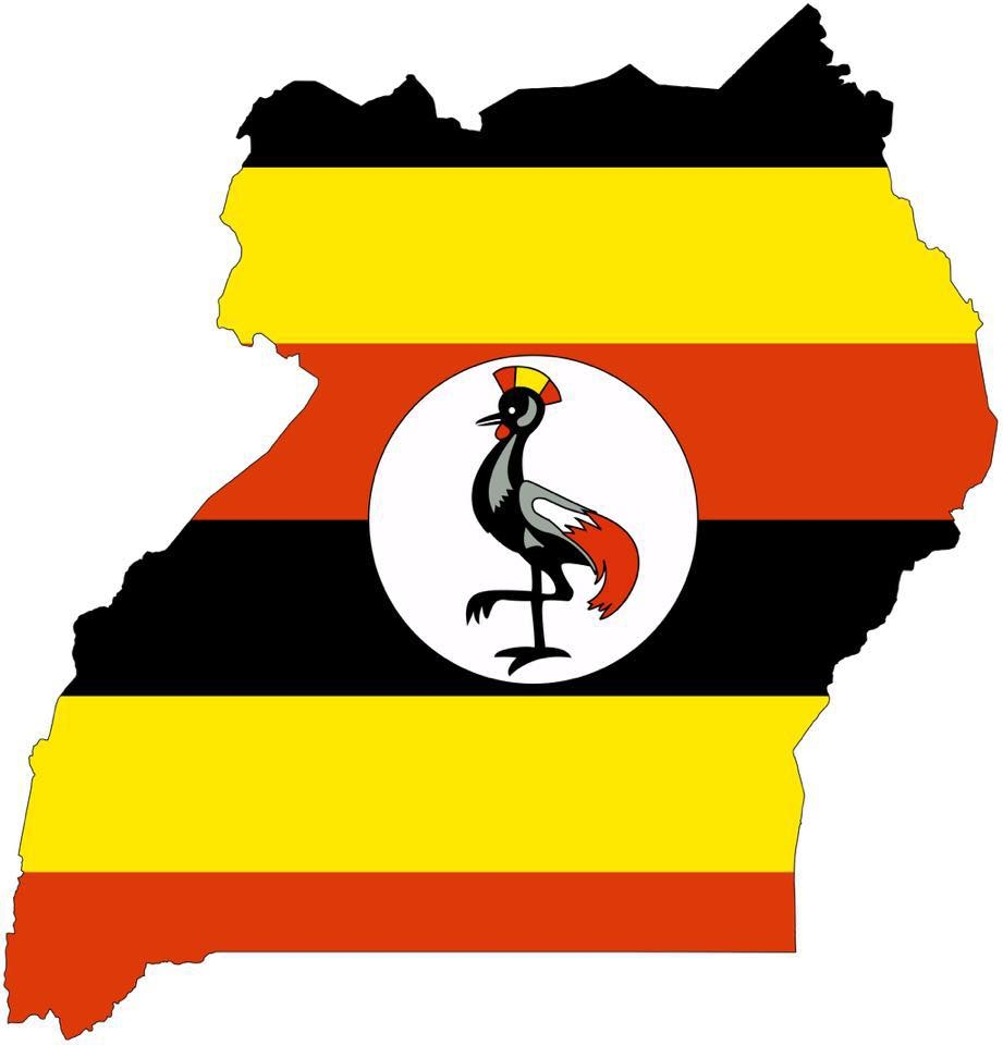The Ugandan Daily Market